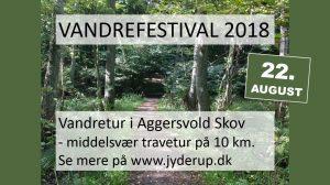 Vandretur i Aggersvold Skov - middelsvær travetur på 10 km